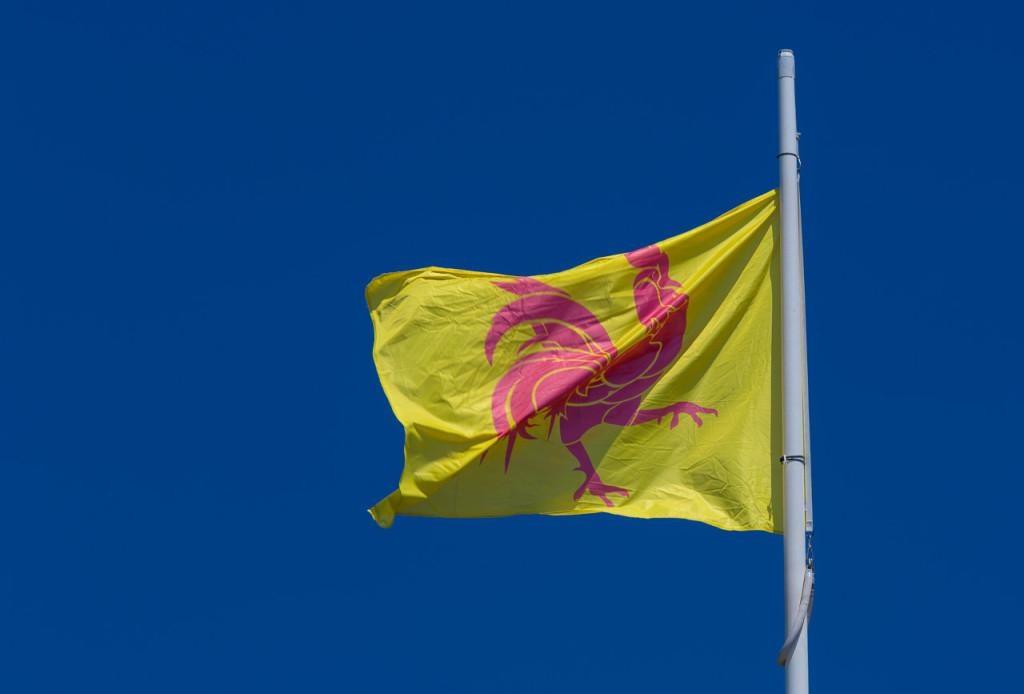 Roter Hahn auf gelben Grund (Wappen der Wallonie)